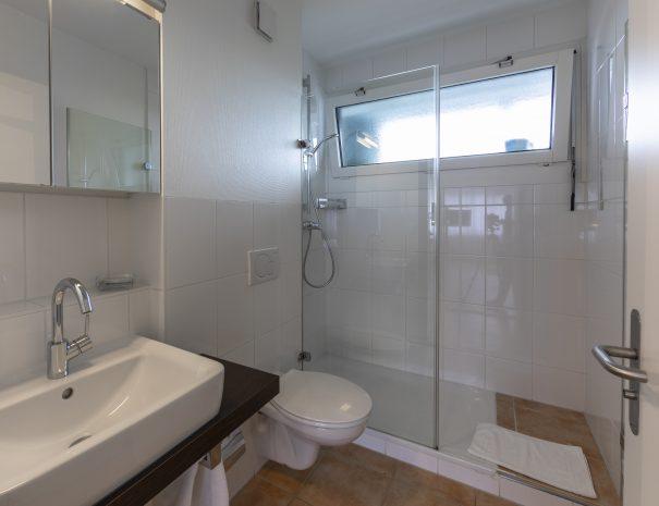 Binningen Apartment 13 (4)