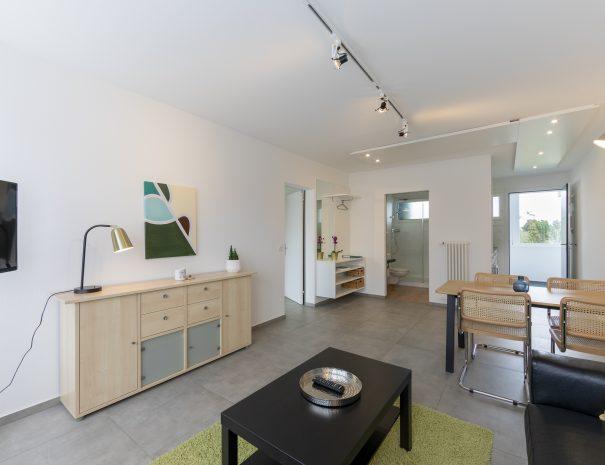 Binningen Apartment 13 (8)