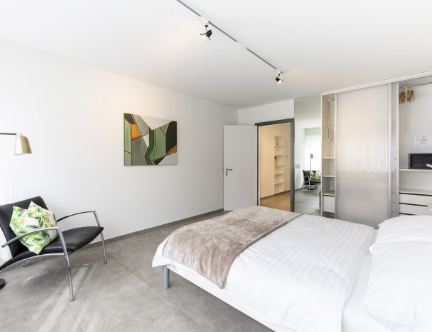 Binningen Apartment 9 (6)